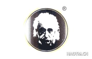 爱因斯坦图形