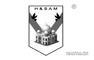 H&SAM