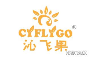 沁飞果 CYFLYGO