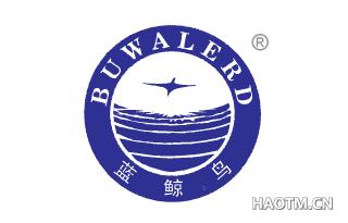 蓝鲸鸟 BUWALERD