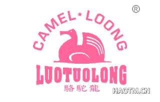 骆驼龙 CAMEL LOONG