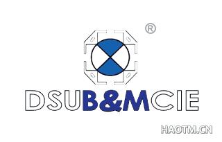 DSUB&MCIE