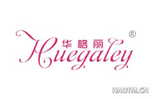 华格丽 HUEGALEY