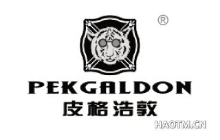 皮格浩敦 PEKGALDON