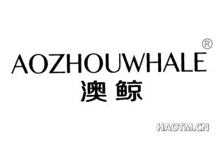 澳鲸 AOZHOUWHALE