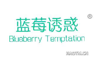 蓝莓诱惑 BLUEBERRY TEMPTATION