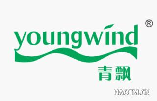 青飘 YOUNGWIND