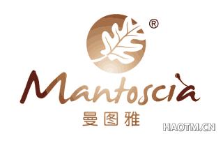 曼图雅 MANTOSCIA