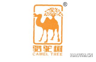 骆驼树 CAMELTREE