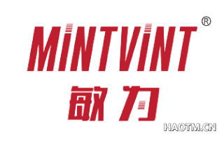 敏为 MINTVINT