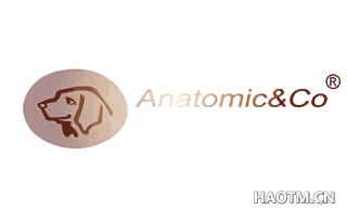 ANATOMICCO