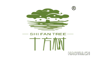 十方树 SHIFANTREE