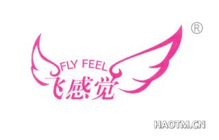 飞感觉 FLYFEEL