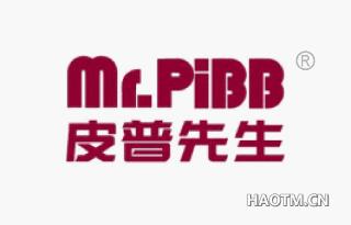 皮普先生 MRPIBB