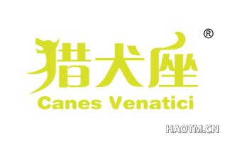 猎户座 CANES VENATICI