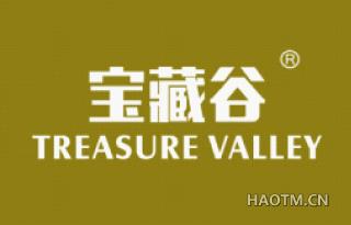 宝藏谷 TREASURE VALLEY