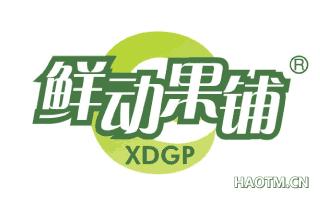 鲜动果铺 XDGP