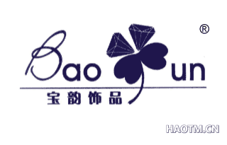 宝韵 BAOUN