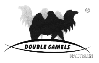 DOUBLE CAMELS