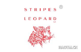 STRIPES LEOPARD