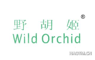 野胡姬 WILD ORCHID