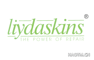 LIYDASKINS THE POWER OF REPAIR
