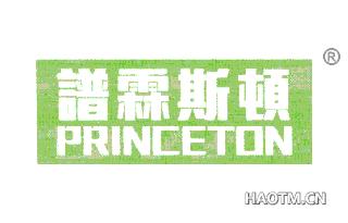谱霖斯顿 PRINCETON