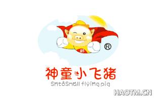 帅神童小飞猪 SNTOSMALLFLYINGPIG