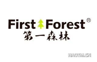 第一森林 FIRST FOREST