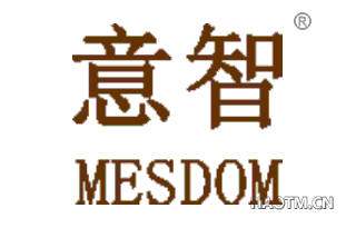 意智 MESDOM