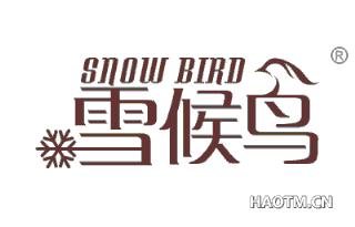 雪候鸟 SNOW BIRD