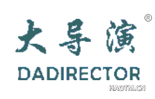 大导演 DADIRECTOR