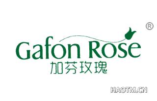 加芬玫瑰 GAFON ROSE