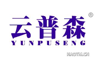 云普森 YUNPUSENG