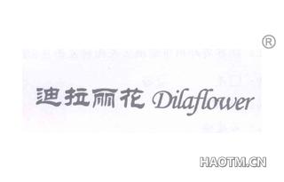 迪拉丽花 DILAFLOWER