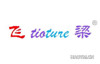 飞梁 TIOTURE