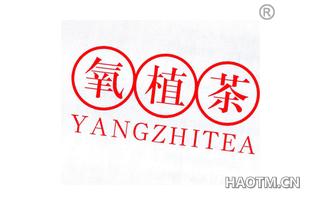 氧植茶 YANGZHITEA