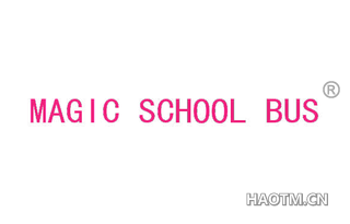 MAGICSCHOOLBUS