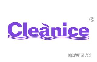 CLEANICE