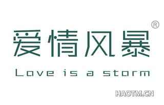 爱情风暴 LOVE IS A STORM