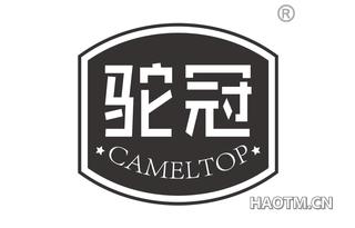 驼冠 CAMELTOP