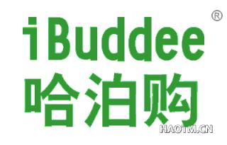 哈泊购 IBUDDEE