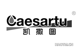 凯撒图 CAESARTU