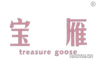 宝雁 TREASURE GOOSE
