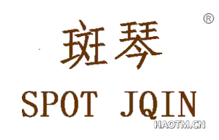 斑琴 SPOT JQIN