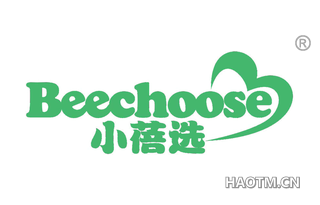 小蓓选 BEECHOOSE