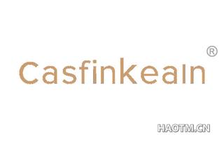 CASFINKEAIN