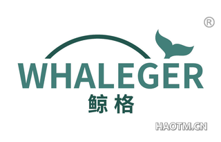 鲸格 WHALEGER