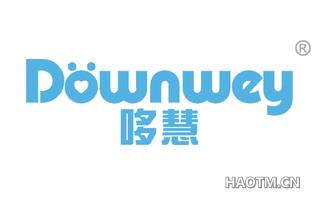 哆慧 DOWNWEY