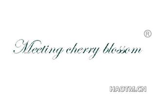 MEETING CHERRY BLOSSOM